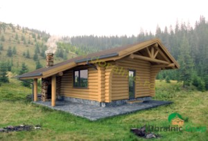 proiect casa din lemn rotund 2 - 1