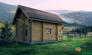 proiect casa din busteni 5 - 3