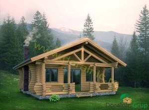 proiect casa din busteni 6 - 1