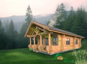 proiect casa din busteni 6 - 2