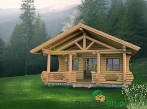 proiect casa din busteni 6 - 3