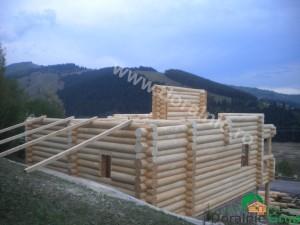 cabana din lemn rotund stelian 9