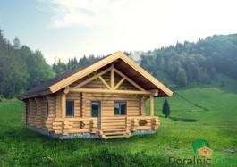 proiect casa din busteni 8 - 1