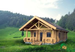 proiect casa din busteni 8 - 2