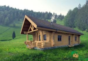 proiect casa din busteni 8 - 3