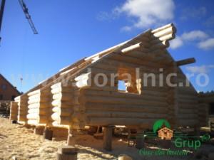Cabana Almasa 5
