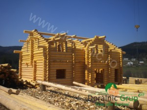Casa Puscas 4
